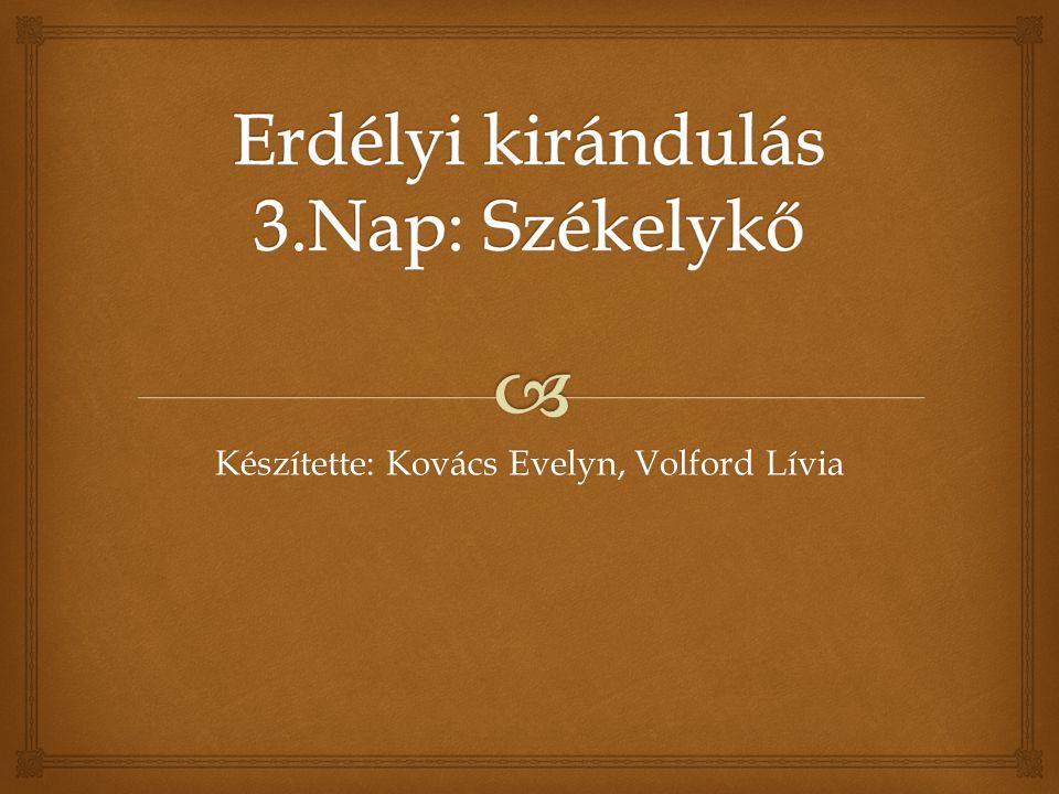 Készítette: Kovács Evelyn, Volford Lívia