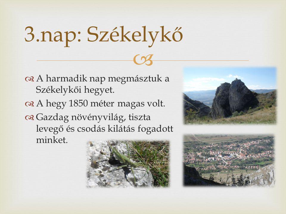   A harmadik nap megmásztuk a Székelykői hegyet.  A hegy 1850 méter magas volt.  Gazdag növényvilág, tiszta levegő és csodás kilátás fogadott mink