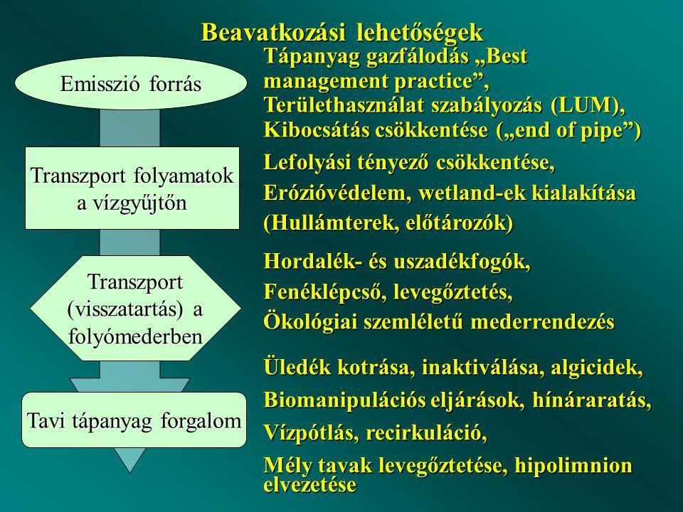 """Beavatkozási lehetőségek Emisszió forrás Transzport folyamatok a vízgyűjtőn Transzport (visszatartás) a folyómederben Tavi tápanyag forgalom Tápanyag gazfálodás """"Best management practice , Területhasználat szabályozás (LUM), Kibocsátás csökkentése (""""end of pipe ) Lefolyási tényező csökkentése, Erózióvédelem, wetland-ek kialakítása (Hullámterek, előtározók) Hordalék- és uszadékfogók, Fenéklépcső, levegőztetés, Ökológiai szemléletű mederrendezés Üledék kotrása, inaktiválása, algicidek, Biomanipulációs eljárások, hínáraratás, Vízpótlás, recirkuláció, Mély tavak levegőztetése, hipolimnion elvezetése"""