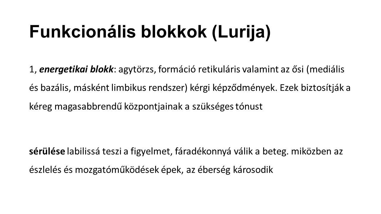 Funkcionális blokkok (Lurija) 1, energetikai blokk: agytörzs, formáció retikuláris valamint az ősi (mediális és bazális, másként limbikus rendszer) ké