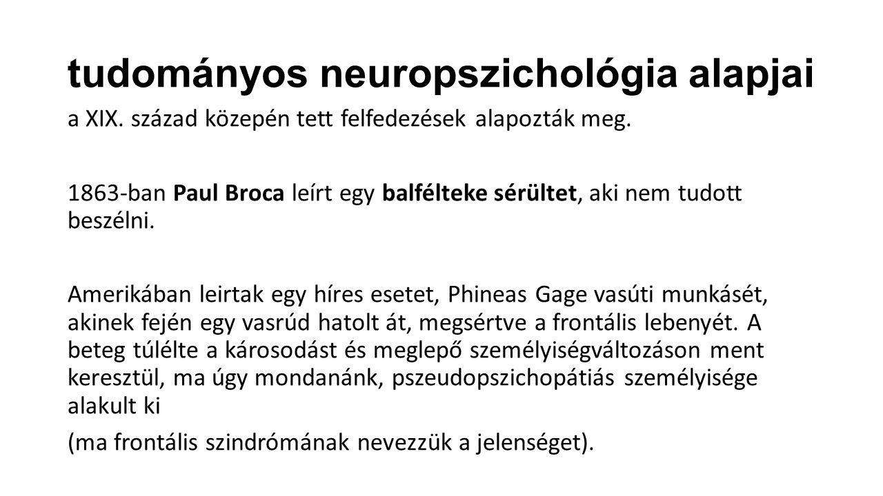 tudományos neuropszichológia alapjai a XIX. század közepén tett felfedezések alapozták meg. 1863-ban Paul Broca leírt egy balfélteke sérültet, aki nem