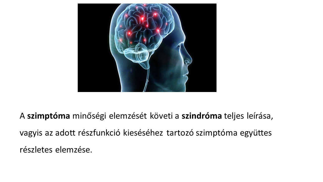 A szimptóma minőségi elemzését követi a szindróma teljes leírása, vagyis az adott részfunkció kieséséhez tartozó szimptóma együttes részletes elemzése