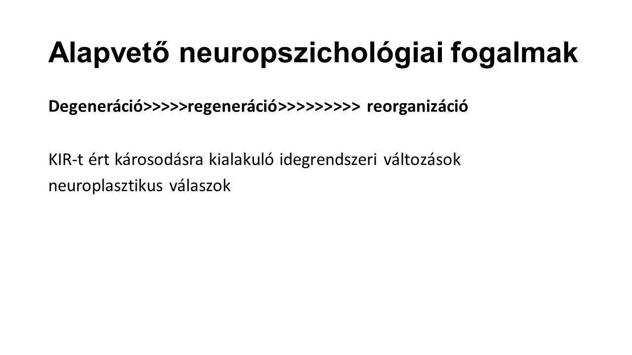Alapvető neuropszichológiai fogalmak Degeneráció>>>>>regeneráció>>>>>>>>> reorganizáció KIR-t ért károsodásra kialakuló idegrendszeri változások neuro