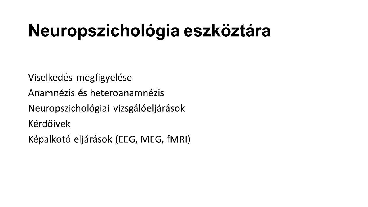 Neuropszichológia eszköztára Viselkedés megfigyelése Anamnézis és heteroanamnézis Neuropszichológiai vizsgálóeljárások Kérdőívek Képalkotó eljárások (