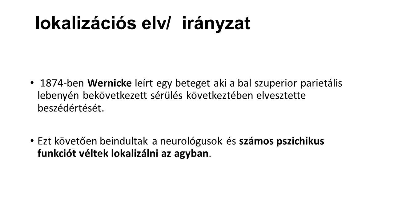 lokalizációs elv/ irányzat 1874-ben Wernicke leírt egy beteget aki a bal szuperior parietális lebenyén bekövetkezett sérülés következtében elvesztette