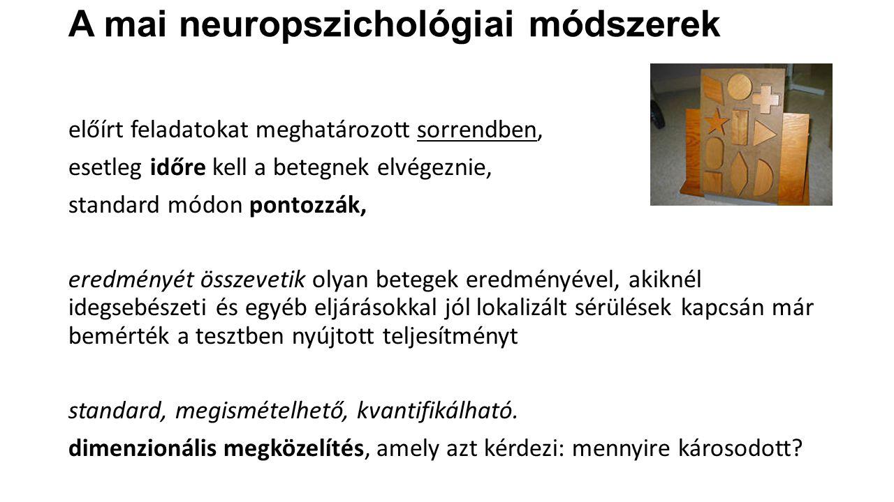 Alapvető neuropszichológiai fogalmak Degeneráció>>>>>regeneráció>>>>>>>>> reorganizáció KIR-t ért károsodásra kialakuló idegrendszeri változások neuroplasztikus válaszok