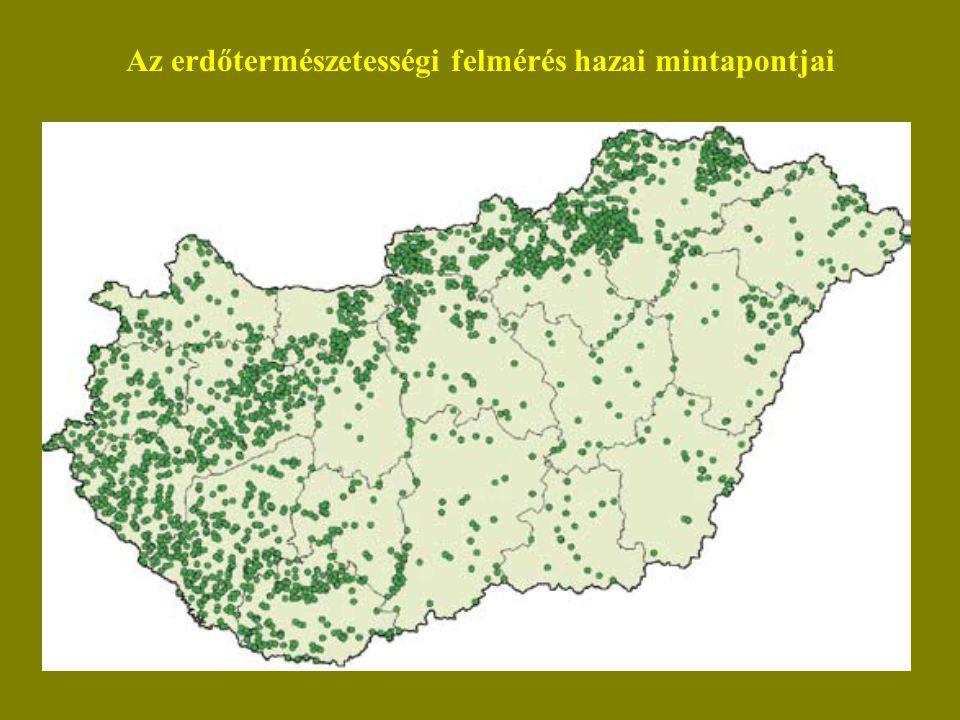 Az erdőtermészetességi felmérés hazai mintapontjai
