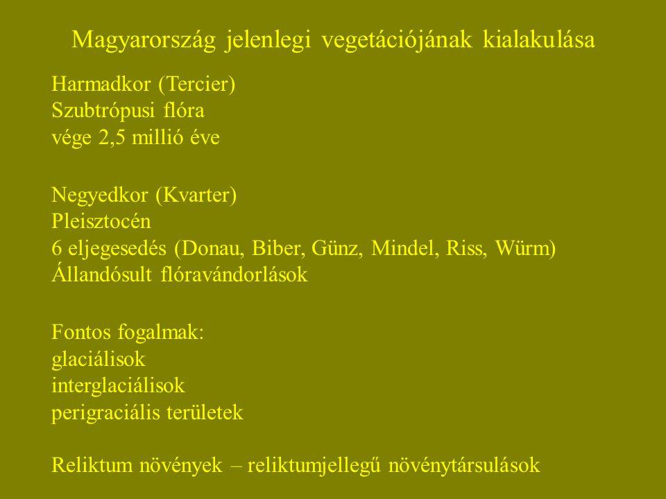 Harmadkor (Tercier) Szubtrópusi flóra vége 2,5 millió éve Negyedkor (Kvarter) Pleisztocén 6 eljegesedés (Donau, Biber, Günz, Mindel, Riss, Würm) Állandósult flóravándorlások Fontos fogalmak: glaciálisok interglaciálisok perigraciális területek Reliktum növények – reliktumjellegű növénytársulások Magyarország jelenlegi vegetációjának kialakulása