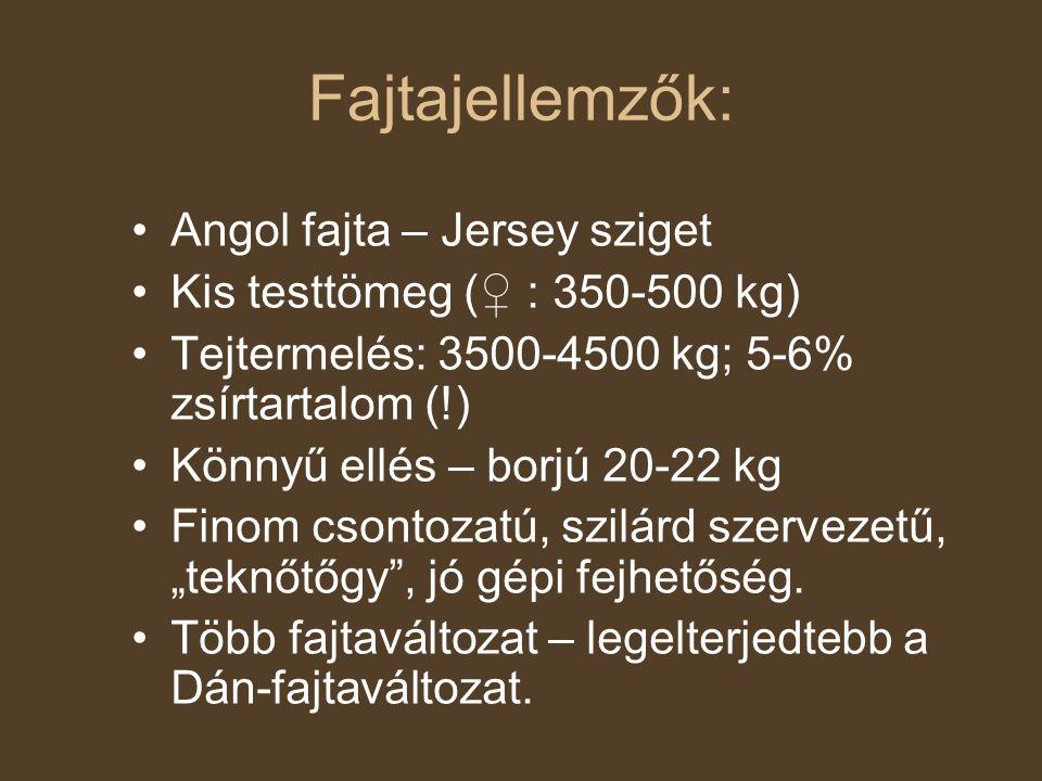 Fajtajellemzők: Angol fajta – Jersey sziget Kis testtömeg (♀ : 350-500 kg) Tejtermelés: 3500-4500 kg; 5-6% zsírtartalom (!) Könnyű ellés – borjú 20-22
