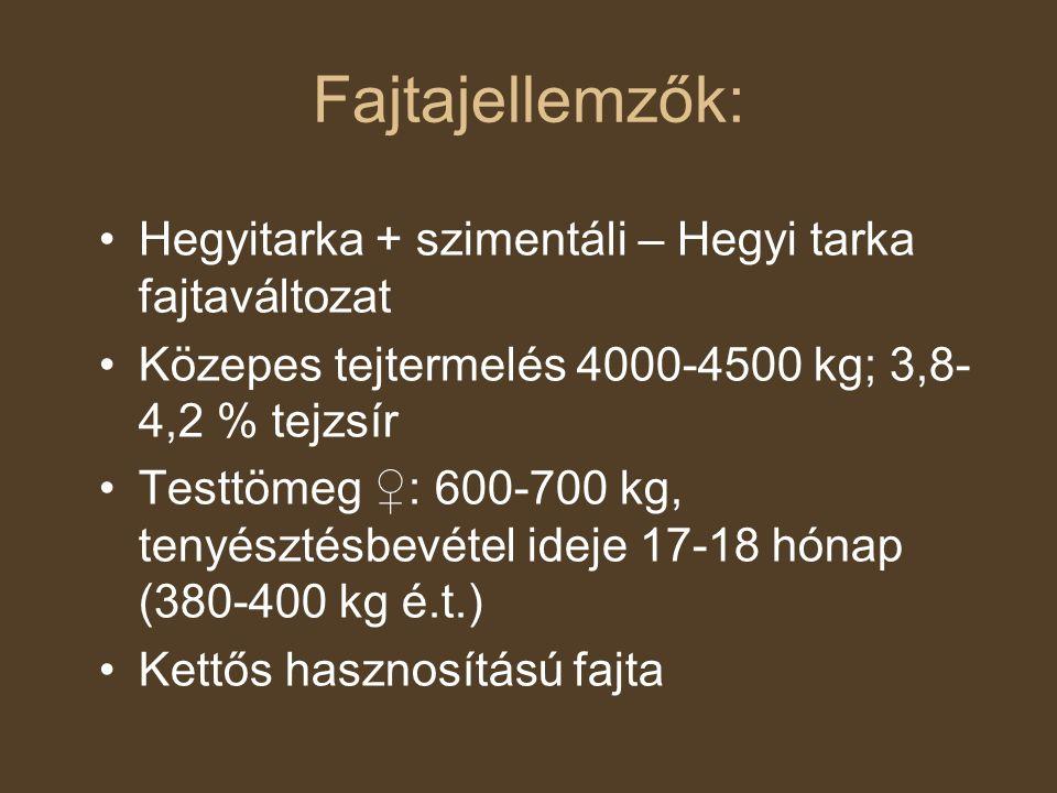 Fajtajellemzők: Hegyitarka + szimentáli – Hegyi tarka fajtaváltozat Közepes tejtermelés 4000-4500 kg; 3,8- 4,2 % tejzsír Testtömeg ♀: 600-700 kg, teny