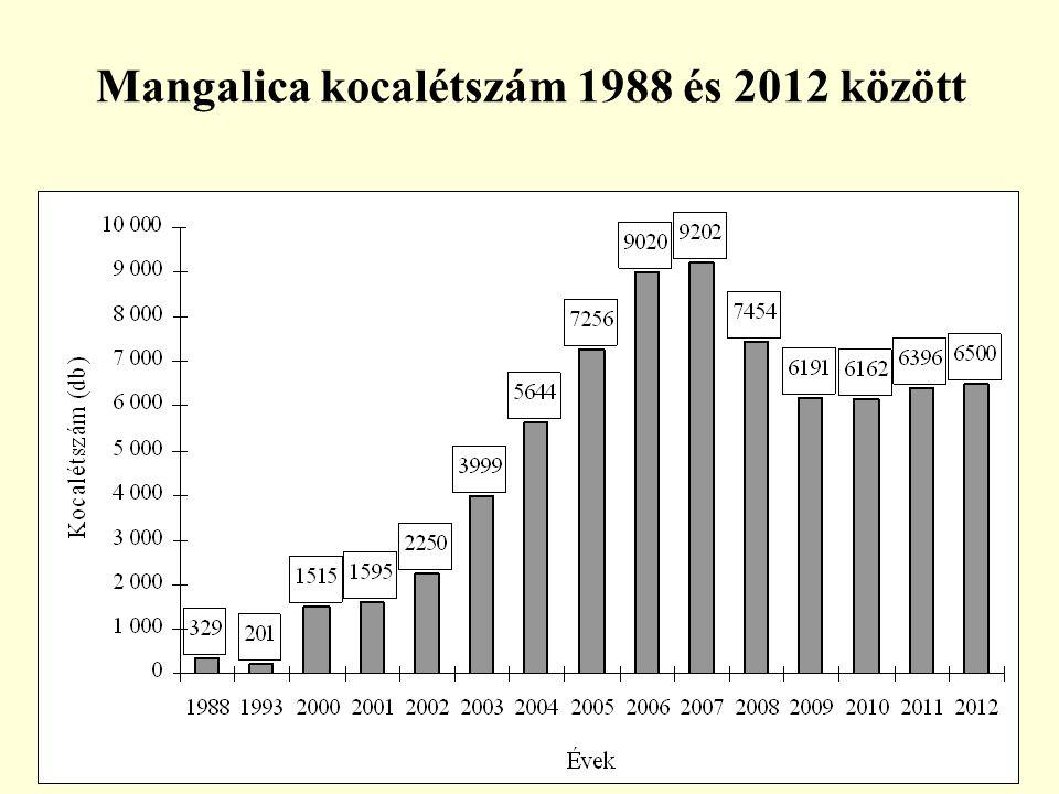 Mangalica kocalétszám 1988 és 2012 között