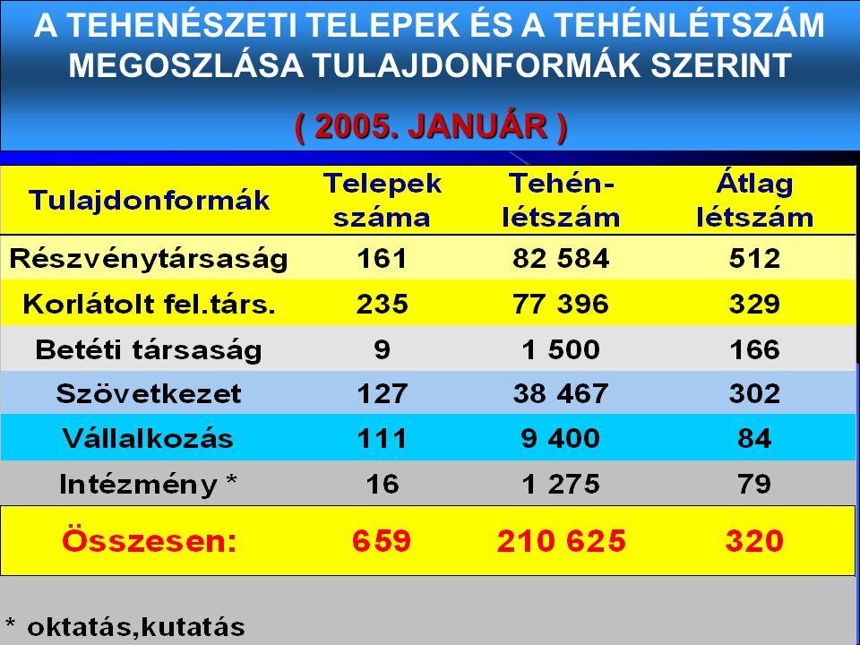 A TEHENÉSZETI TELEPEK ÉS A TEHÉNLÉTSZÁM MEGOSZLÁSA TULAJDONFORMÁK SZERINT ( 2005. JANUÁR )
