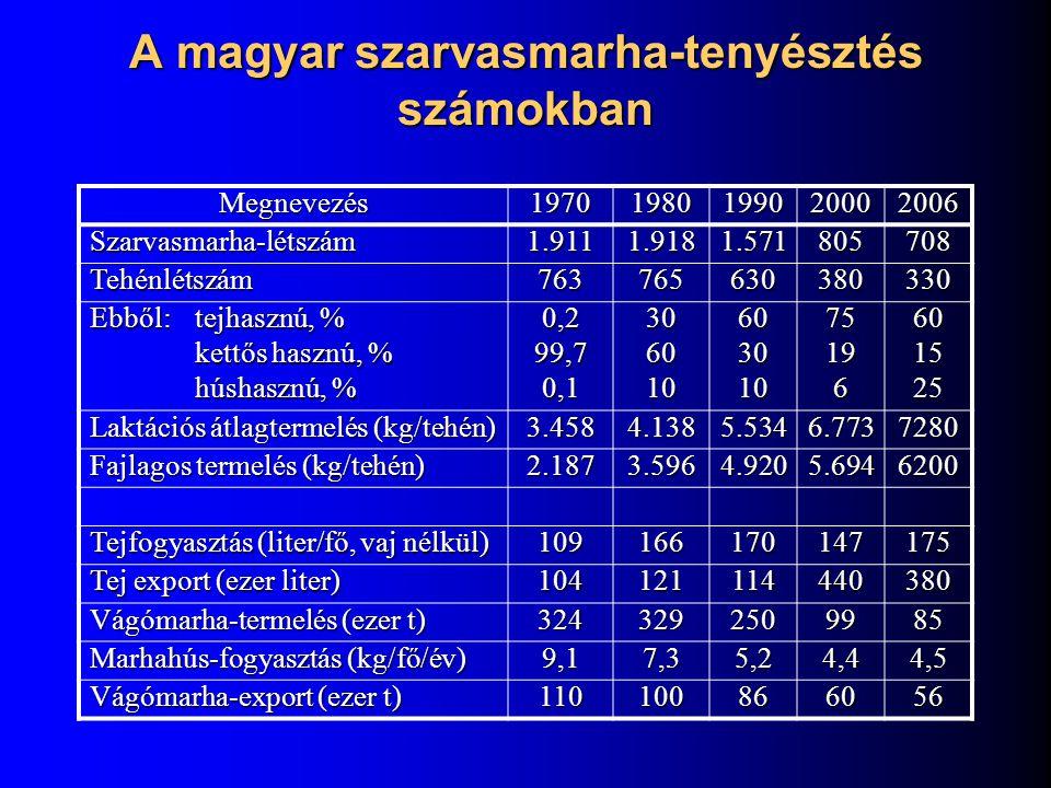 A magyar szarvasmarha-tenyésztés számokban Megnevezés19701980199020002006 Szarvasmarha-létszám1.9111.9181.571805708 Tehénlétszám763765630380330 Ebből:
