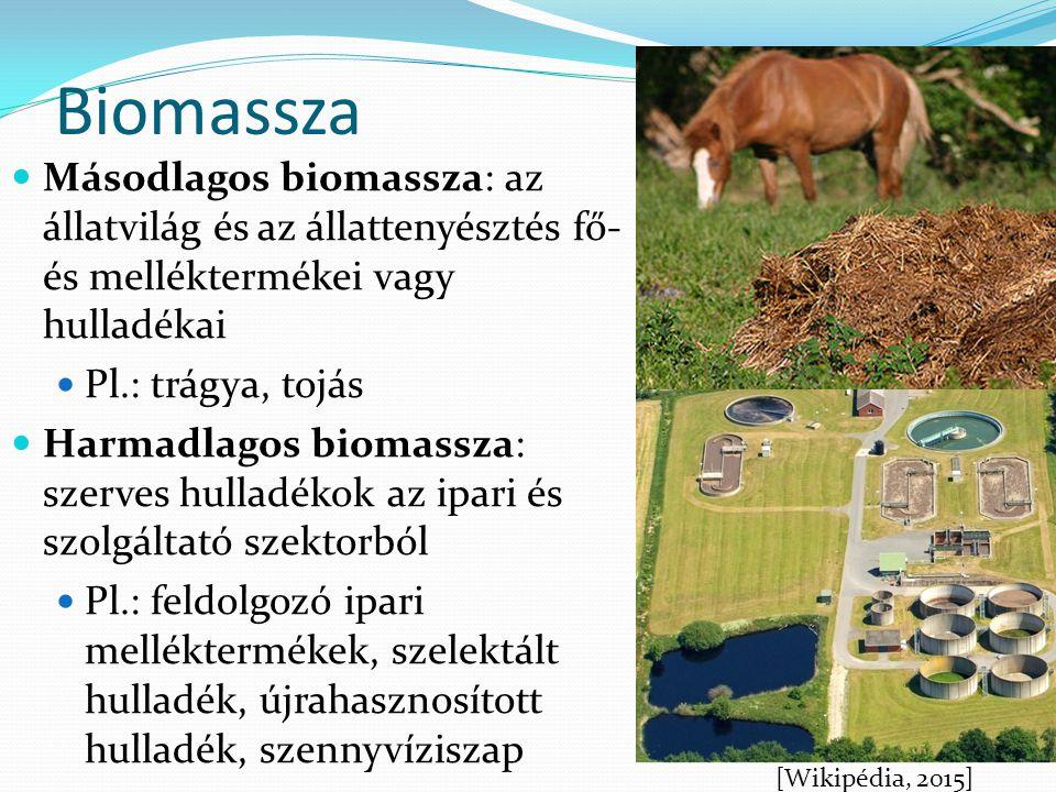 Másodlagos biomassza: az állatvilág és az állattenyésztés fő- és melléktermékei vagy hulladékai Pl.: trágya, tojás Harmadlagos biomassza: szerves hull