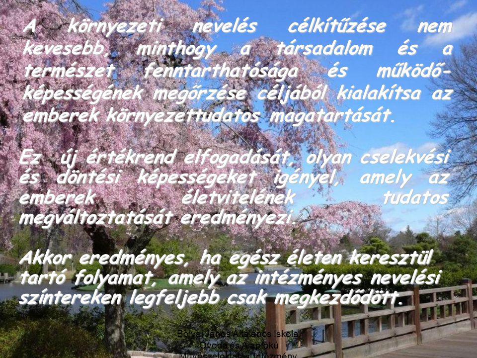 Bolyai János Általános Iskola, Óvoda és Alapfokú Művészetoktatási Intézmény, Debrecen A környezeti nevelés célkítűzése nem kevesebb, minthogy a társadalom és a természet fenntarthatósága és működő- képességének megőrzése céljából kialakítsa az emberek környezettudatos magatartását.