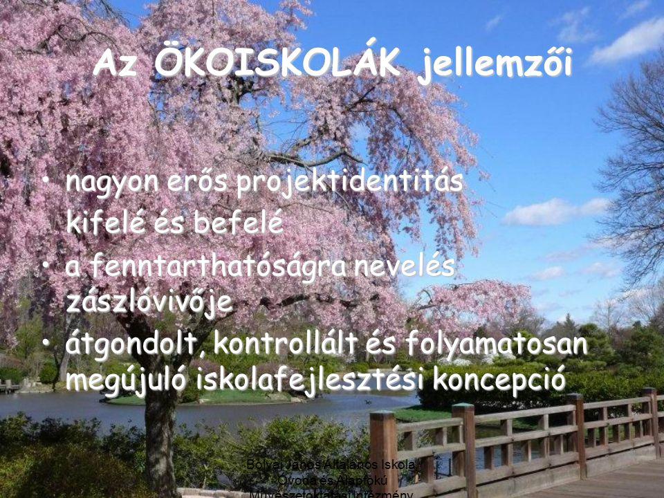 Bolyai János Általános Iskola, Óvoda és Alapfokú Művészetoktatási Intézmény, Debrecen Az ÖKOISKOLÁK jellemzői nagyon erős projektidentitásnagyon erős projektidentitás kifelé és befelé a fenntarthatóságra nevelés zászlóvivőjea fenntarthatóságra nevelés zászlóvivője átgondolt, kontrollált és folyamatosan megújuló iskolafejlesztési koncepcióátgondolt, kontrollált és folyamatosan megújuló iskolafejlesztési koncepció