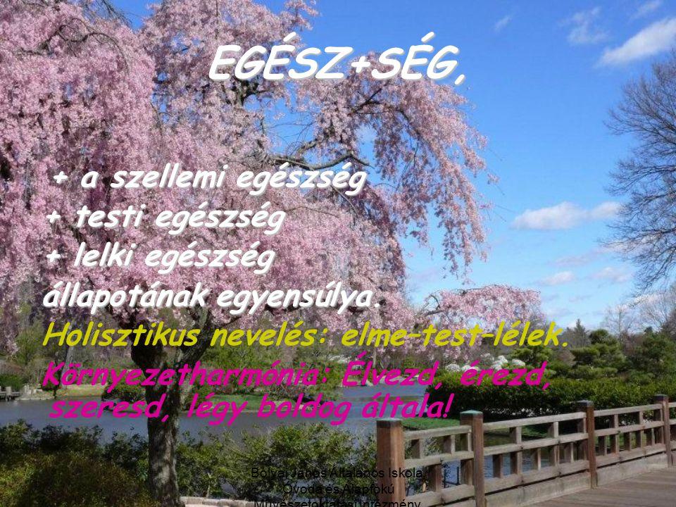 Bolyai János Általános Iskola, Óvoda és Alapfokú Művészetoktatási Intézmény, Debrecen EGÉSZ+SÉG, + a szellemi egészség + testi egészség + lelki egészség állapotának egyensúlya.