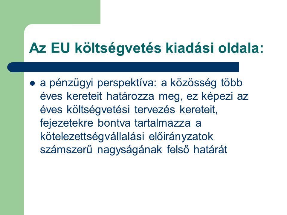 Az EU költségvetés kiadási oldala: a pénzügyi perspektíva: a közösség több éves kereteit határozza meg, ez képezi az éves költségvetési tervezés kereteit, fejezetekre bontva tartalmazza a kötelezettségvállalási előirányzatok számszerű nagyságának felső határát
