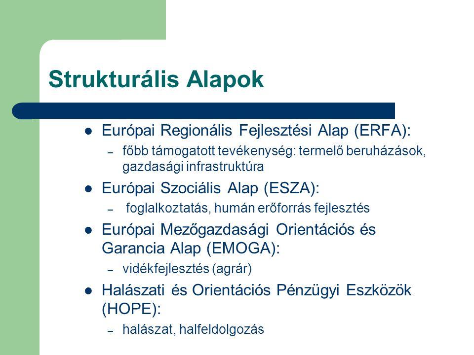 Strukturális Alapok Európai Regionális Fejlesztési Alap (ERFA): – főbb támogatott tevékenység: termelő beruházások, gazdasági infrastruktúra Európai Szociális Alap (ESZA): – foglalkoztatás, humán erőforrás fejlesztés Európai Mezőgazdasági Orientációs és Garancia Alap (EMOGA): – vidékfejlesztés (agrár) Halászati és Orientációs Pénzügyi Eszközök (HOPE): – halászat, halfeldolgozás