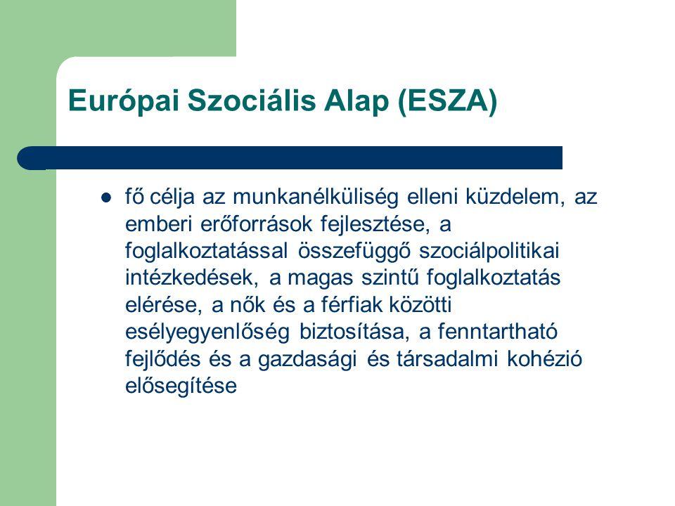 Európai Szociális Alap (ESZA) fő célja az munkanélküliség elleni küzdelem, az emberi erőforrások fejlesztése, a foglalkoztatással összefüggő szociálpolitikai intézkedések, a magas szintű foglalkoztatás elérése, a nők és a férfiak közötti esélyegyenlőség biztosítása, a fenntartható fejlődés és a gazdasági és társadalmi kohézió elősegítése