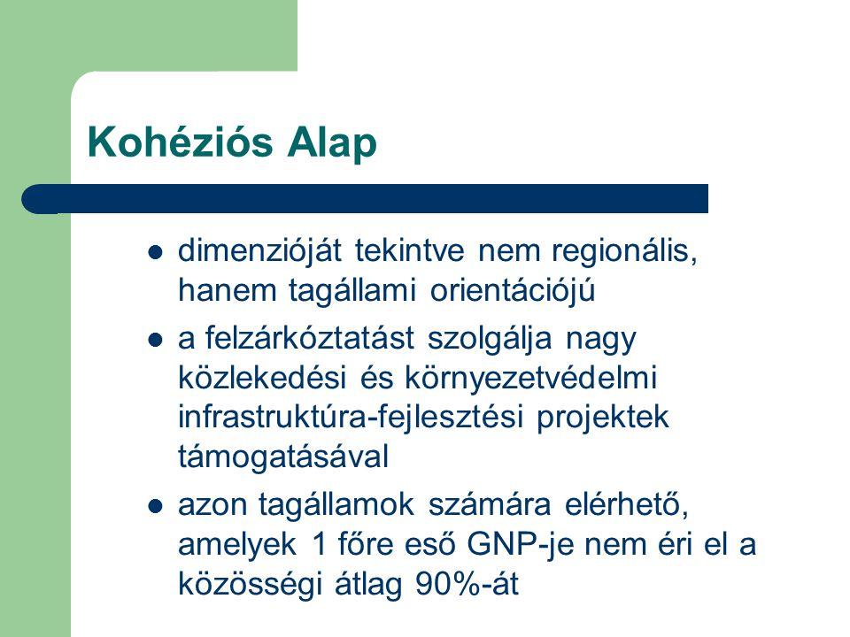 Kohéziós Alap dimenzióját tekintve nem regionális, hanem tagállami orientációjú a felzárkóztatást szolgálja nagy közlekedési és környezetvédelmi infrastruktúra-fejlesztési projektek támogatásával azon tagállamok számára elérhető, amelyek 1 főre eső GNP-je nem éri el a közösségi átlag 90%-át