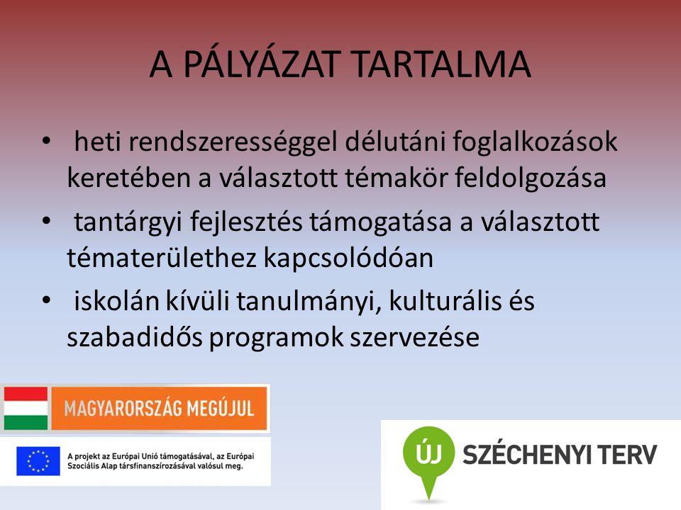 A PÁLYÁZAT TARTALMA aktív és folyamatos intézményközi kapcsolat kialakítása és erősítése  1.