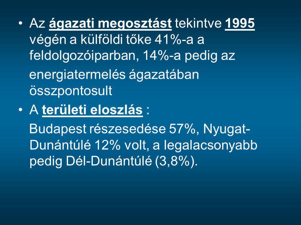 Az ágazati megosztást tekintve 1995 végén a külföldi tőke 41%-a a feldolgozóiparban, 14%-a pedig az energiatermelés ágazatában összpontosult A terület