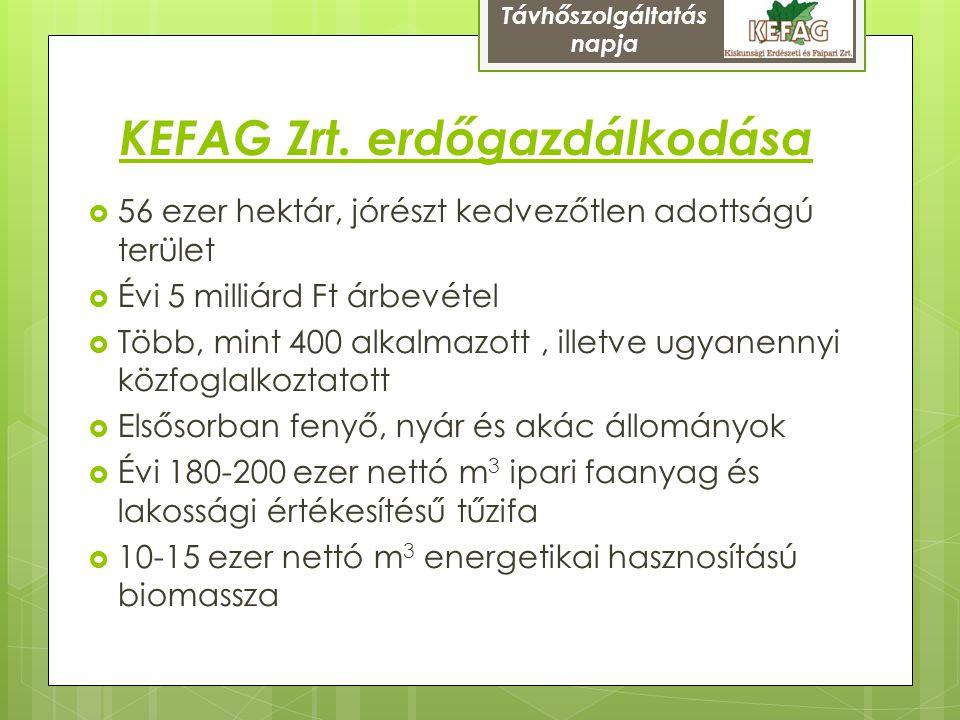 KEFAG Zrt. erdőgazdálkodása  56 ezer hektár, jórészt kedvezőtlen adottságú terület  Évi 5 milliárd Ft árbevétel  Több, mint 400 alkalmazott, illetv