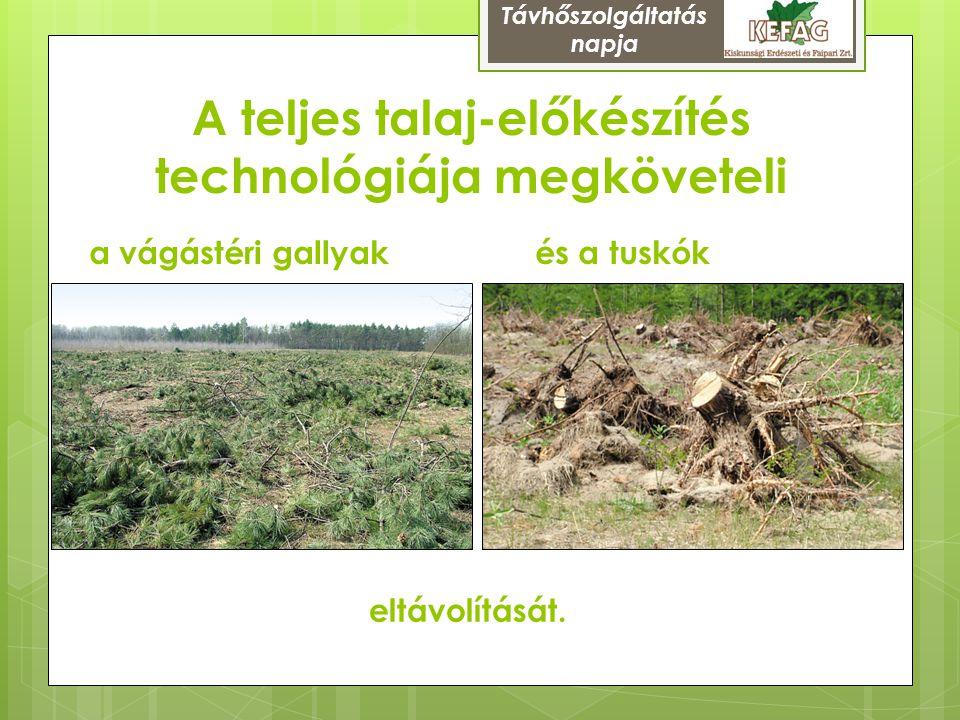 A teljes talaj-előkészítés technológiája megköveteli és a tuskóka vágástéri gallyak eltávolítását. Távhőszolgáltatás napja