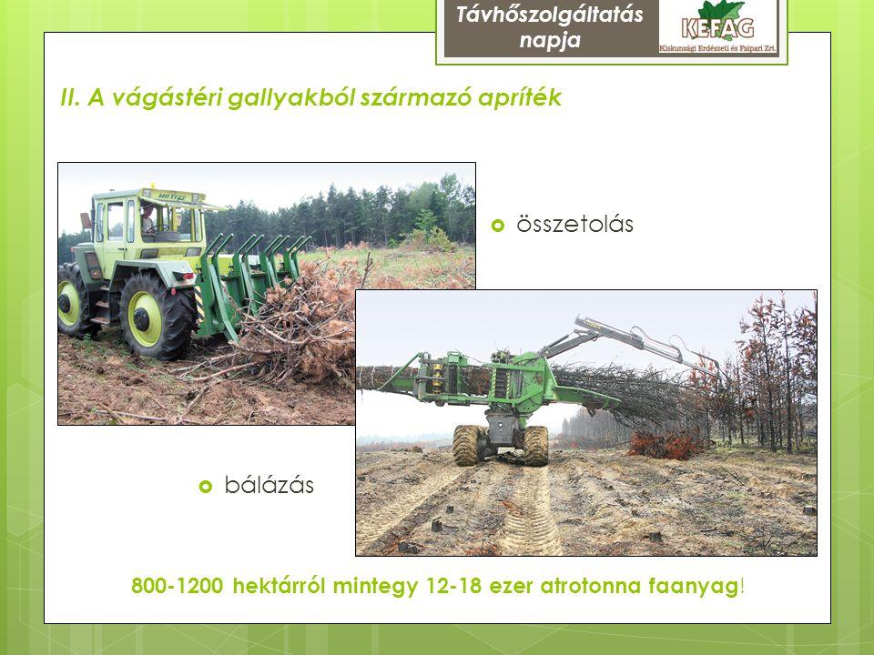 Nálunk elsősorban fenyő gally (és tű) valamint a fel nem dolgozható faanyag  az egyéb fafajok gallyfájának gyűjtése a lakosságé marad  az iparilag feldolgozható nyersanyag mennyisége nem csökken  jelenleg csak kis mértékben feldolgozott, hasznosításával olyan nyersanyagforrást vonunk be, ami más érdeket nem sért  nem jár további fakitermeléssel, jobb erdőket tudunk létesíteni Már a tervezésnél fel kell technológiailag készülni rá:  Kevésbé homogén, földdel (esetleg mással is) szennyezett lehet (<5%)  Fenyőtűt tartalmaz (~40% !)  A nedvességtartalom jelentős része éghető illóolaj, nedvesen is jól ég Egymásra épülő tevékenység, a tuskóhasznosítás előfeltétele Távhőszolgáltatás napja
