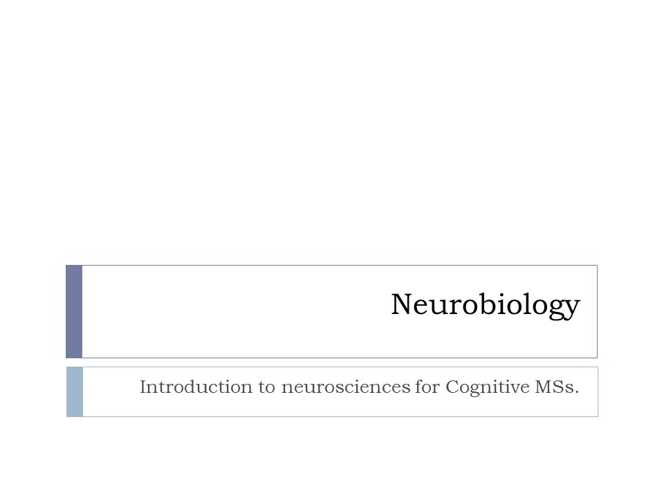 Neurobiology Introduction to neurosciences for Cognitive MSs.