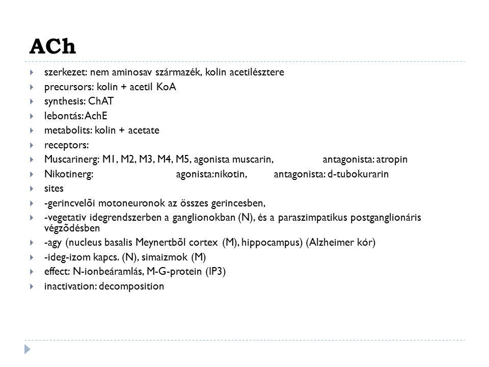 ACh  szerkezet: nem aminosav származék, kolin acetilésztere  precursors: kolin + acetil KoA  synthesis: ChAT  lebontás: AchE  metabolits: kolin +