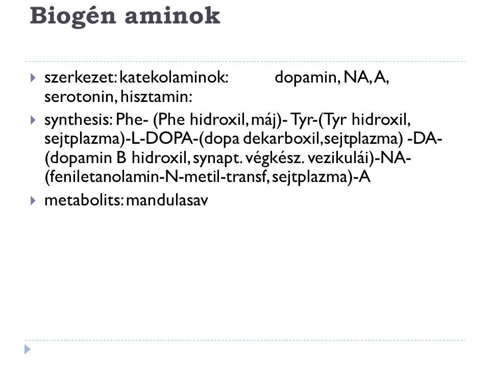 Biogén aminok  szerkezet: katekolaminok: dopamin, NA, A, serotonin, hisztamin:  synthesis: Phe- (Phe hidroxil, máj)- Tyr-(Tyr hidroxil, sejtplazma)-