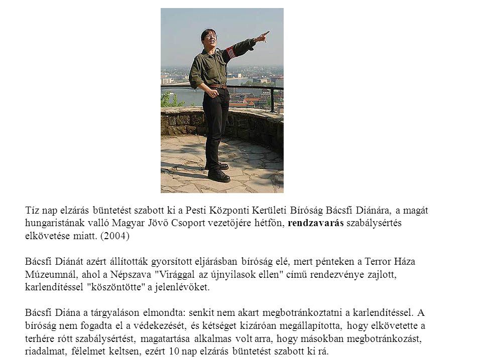 Tíz nap elzárás büntetést szabott ki a Pesti Központi Kerületi Bíróság Bácsfi Diánára, a magát hungaristának valló Magyar Jövő Csoport vezetőjére hétf