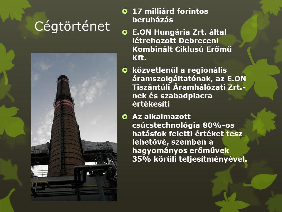 Cégtörténet  17 milliárd forintos beruházás  E.ON Hungária Zrt.