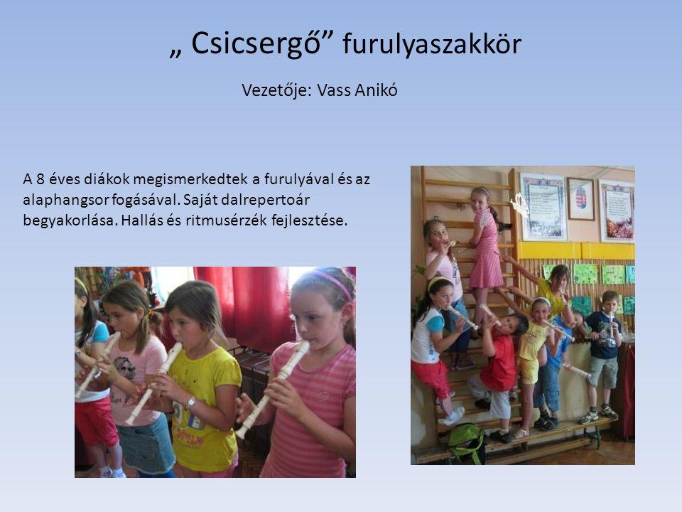 """"""" Csicsergő"""" furulyaszakkör Vezetője: Vass Anikó A 8 éves diákok megismerkedtek a furulyával és az alaphangsor fogásával. Saját dalrepertoár begyakorl"""