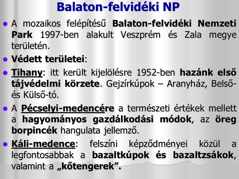 A régió közlekedése Reptér: Sármellék – FlyBalaton Reptér: Sármellék – FlyBalaton Kisvasút: Balatonfenyves – Somogyszentpál Kisvasút: Balatonfenyves – Somogyszentpál Naponta 5 vonat indul, a menetidő 40 perc.
