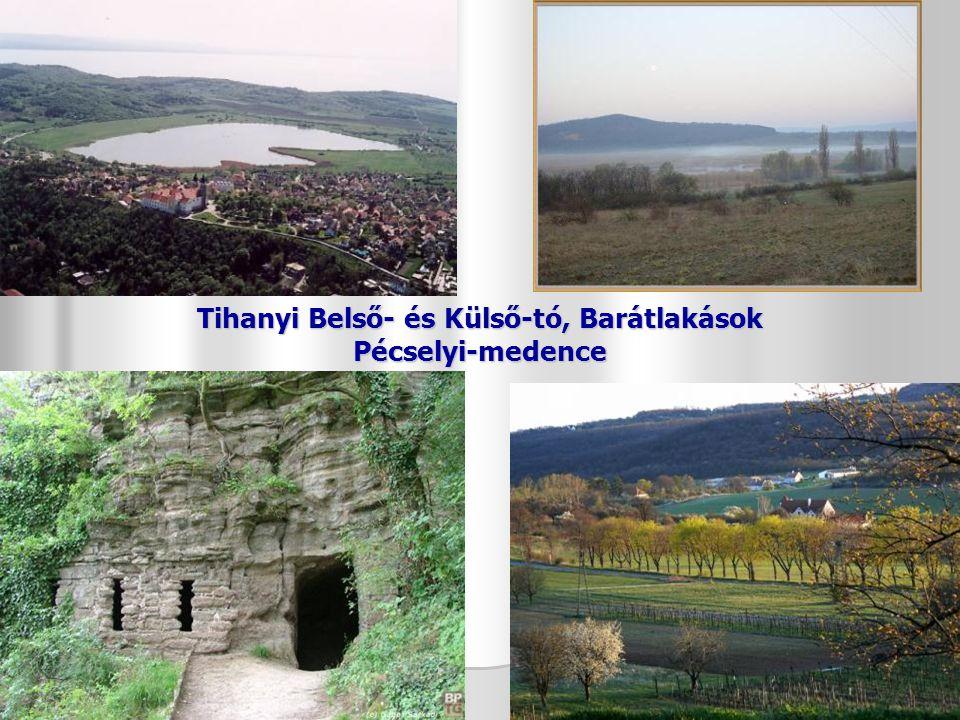 Gyurgyalag Levendula Tihany – Aranyház gejzírkúpja