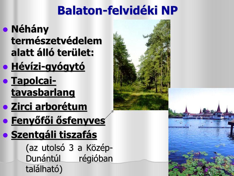 Kis-Balaton, Kányavári-sziget, Kápolnapusztai bivalyrezervátum