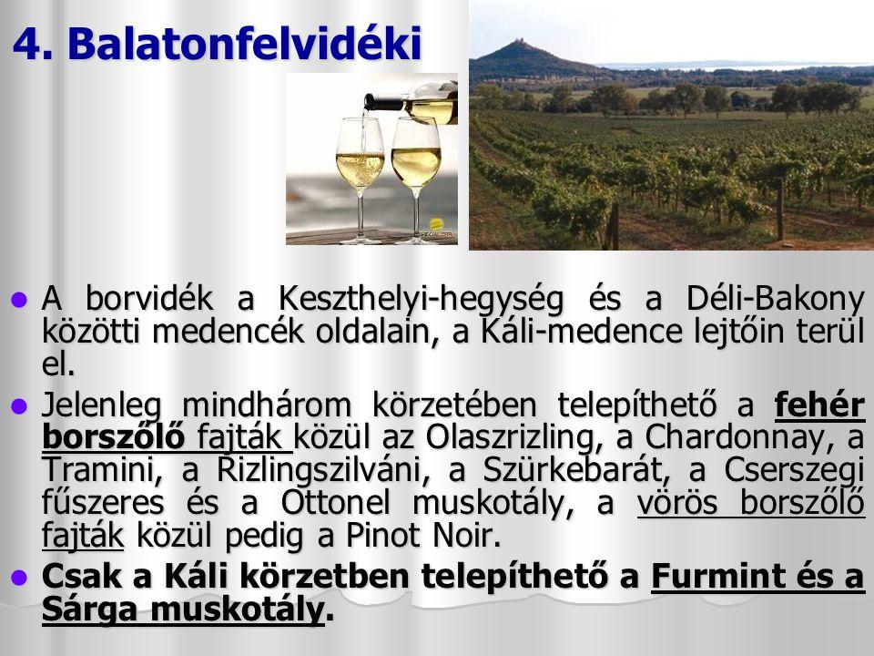 3.Balatonfüred-Csopak A Balaton keleti medencéjében található, Alsóörstől Zánkáig.