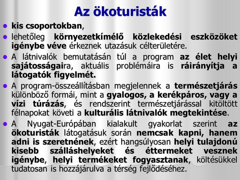 Várak, kastélyok Balatonszentgyörgy - Csillagvár: a 19.