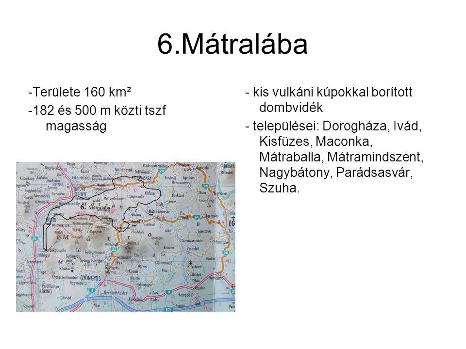 6.Mátralába -Területe 160 km² -182 és 500 m közti tszf magasság - kis vulkáni kúpokkal borított dombvidék - települései: Dorogháza, Ivád, Kisfüzes, Ma