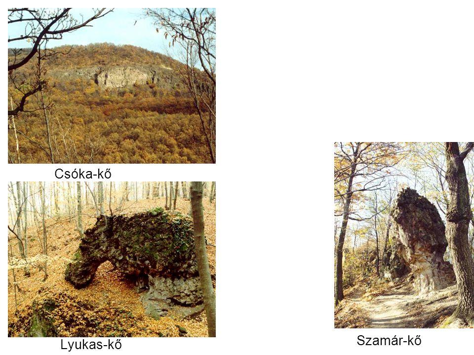 Csóka-kő Lyukas-kő Szamár-kő