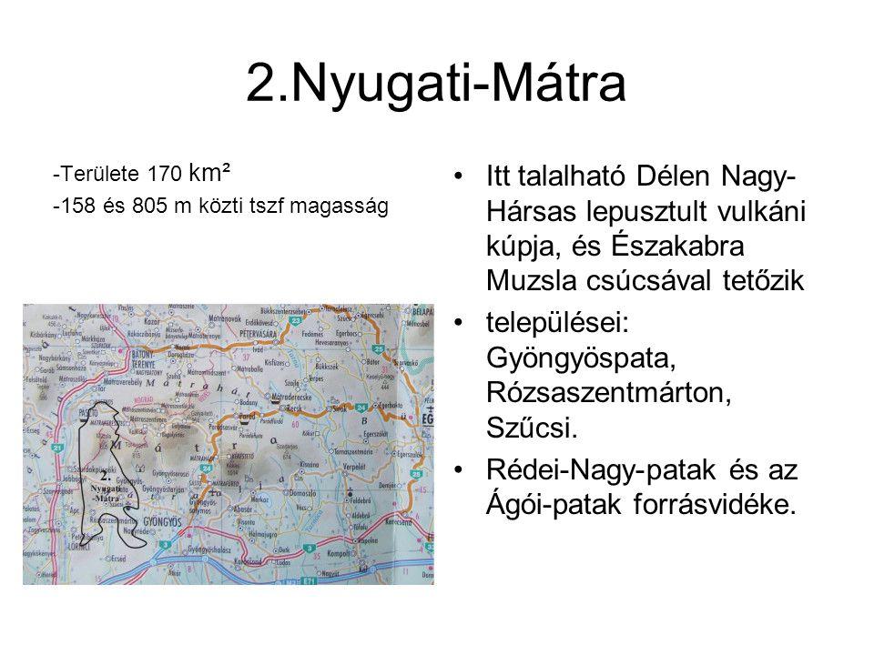 2.Nyugati-Mátra -Területe 170 km² -158 és 805 m közti tszf magasság Itt talalható Délen Nagy- Hársas lepusztult vulkáni kúpja, és Északabra Muzsla csú