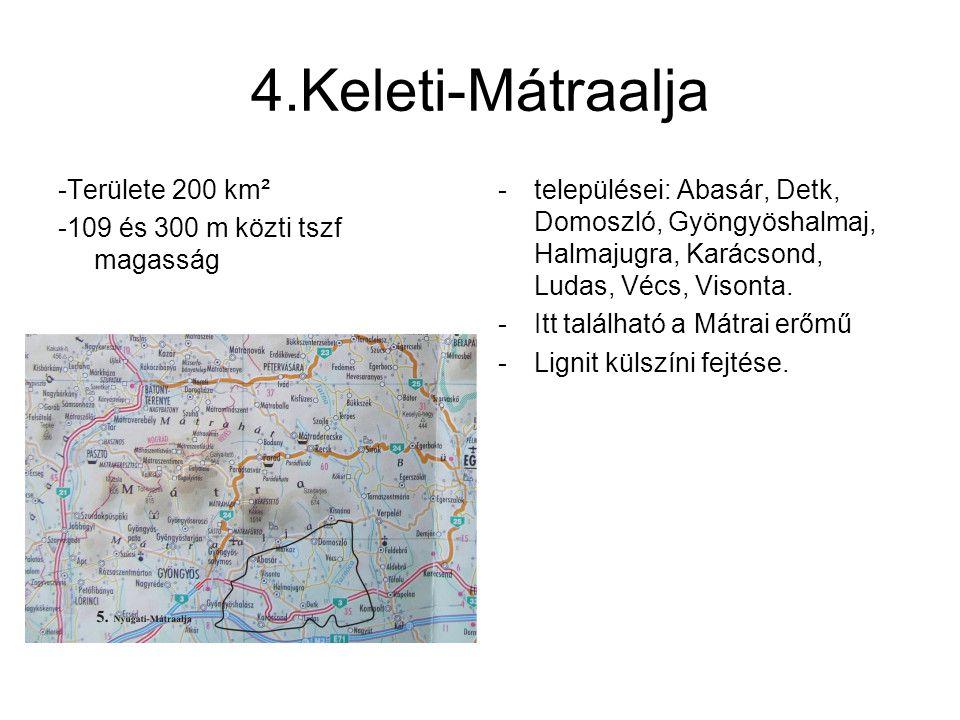 4.Keleti-Mátraalja -Területe 200 km² -109 és 300 m közti tszf magasság -települései: Abasár, Detk, Domoszló, Gyöngyöshalmaj, Halmajugra, Karácsond, Lu