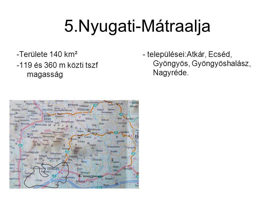 6.Mátralába -Területe 160 km² -182 és 500 m közti tszf magasság - kis vulkáni kúpokkal borított dombvidék - települései: Dorogháza, Ivád, Kisfüzes, Maconka, Mátraballa, Mátramindszent, Nagybátony, Parádsasvár, Szuha.