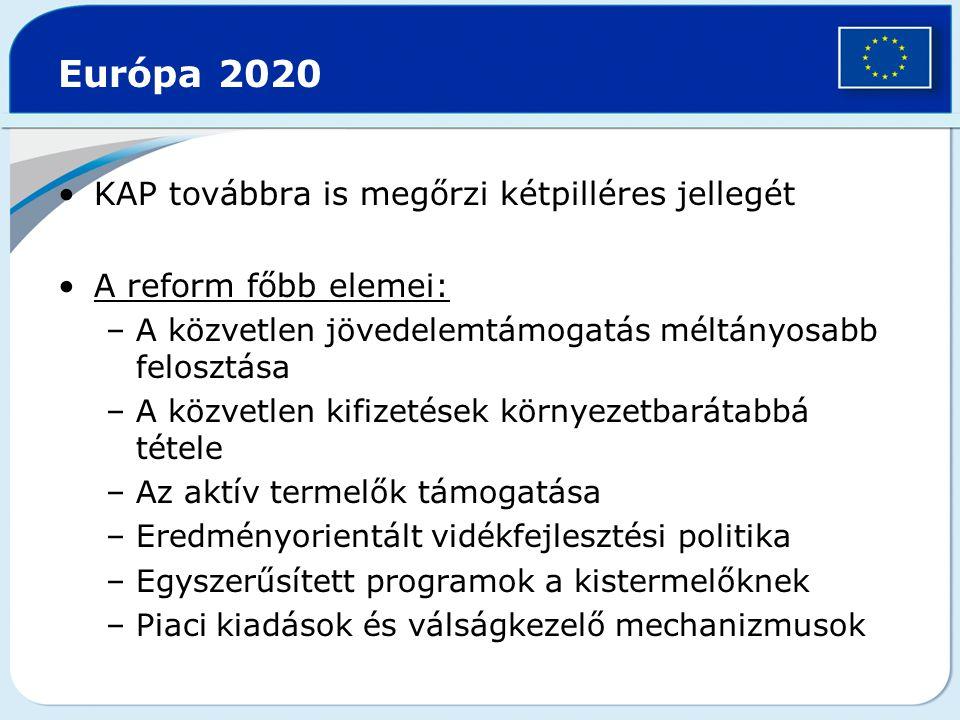 Európa 2020 KAP továbbra is megőrzi kétpilléres jellegét A reform főbb elemei: –A közvetlen jövedelemtámogatás méltányosabb felosztása –A közvetlen ki