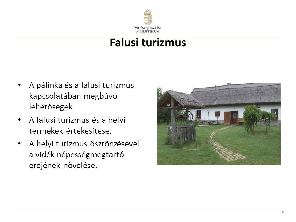 8 Falusi turizmus A pálinka és a falusi turizmus kapcsolatában megbúvó lehetőségek. A falusi turizmus és a helyi termékek értékesítése. A helyi turizm