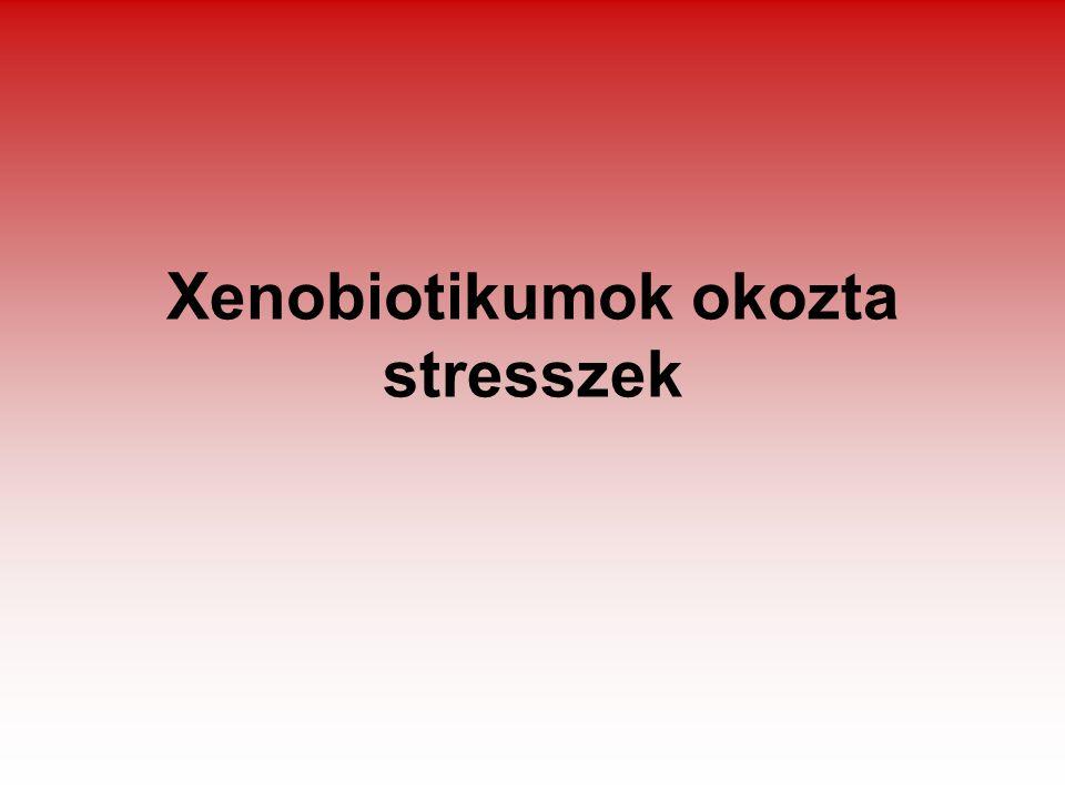 Xenobiotikumok okozta stresszek