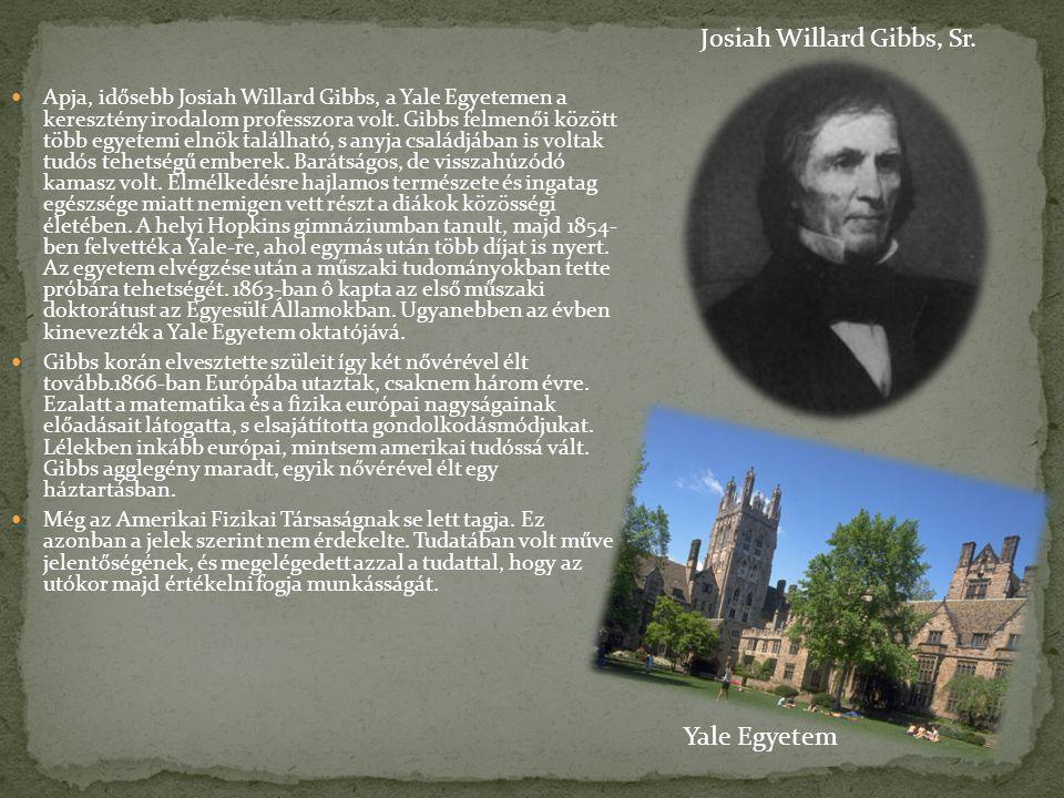 Apja, idősebb Josiah Willard Gibbs, a Yale Egyetemen a keresztény irodalom professzora volt. Gibbs felmenői között több egyetemi elnök található, s an